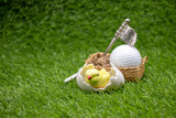 Golf Easter with chick in egg shell with golf ball on green