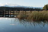 The wooden pier in Lake Mahinapua reflected on a calm, sunny morning with reeds in the foreground. Ruatapu, West Coast New Zealand. - 246289301