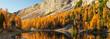 Quadro Lago Fedèra - Dolomites