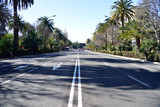 Malaga, Spain, road lined with palm trees in the city. - 246499593