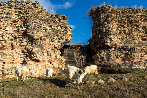 Sunset view of Ruins of the wall of ancient Roman city of Diocletianopolis, town of Hisarya, Plovdiv Region, Bulgaria - 246513339