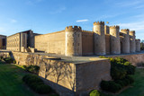 Aljaferia Palace, a fortified medieval Islamic palace in Zaragoza city, Aragon, Spain - 246553736
