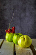 three fruit Quince at doschatom table in red Rowan bunch beam on a blue background 2
