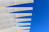 decorative white beams - 246652170