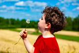 Fototapeta Dmuchawce - Boy blowing dandelion © Jacek Chabraszewski