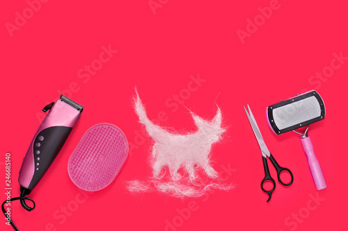 Still life of grooming tools and animal fur in shape of cat © iagodina