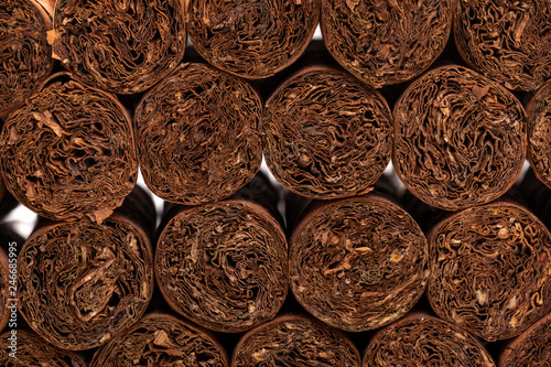 background of Cuban cigars. close-up detail of cigars. background on the topic of cigars
