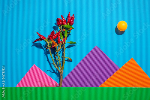Scenery from sheets of colored paper and pepper bush - 246735324