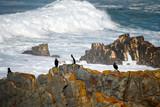 Portugal, côte atlantique, plage d'almograve
