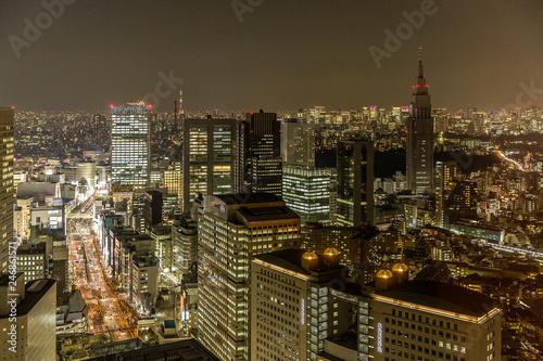 fototapeta na ścianę Tokyo Skyline, Japan