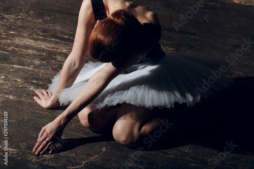 Young beautiful woman ballet dancer, dressed in professional outfit, pointe shoes and white tutu. © primipil