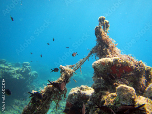underwater scene with fishing nets