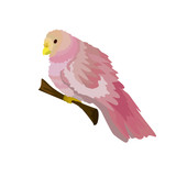 Cute parrot color flamingo. A small parrot sitting on a thin twig.