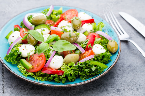 Vegetable salad with cheese mozzarella, tomatoes, basilikum and spice. - 247048535