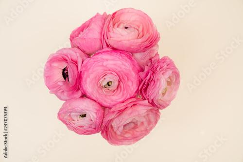 Ranununculus Floral flat Lay on Cream Background - 247075393