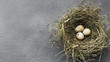 Leinwanddruck Bild - Quail eggs in straw nest on gray table
