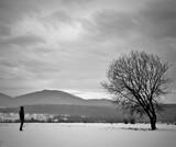 человек и одинокое дерево - 247154188
