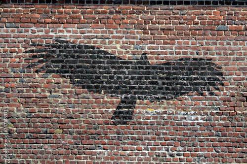 Street art. Un aigle - 247168371