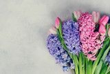 Hyacinth fresh flowers - 247180718