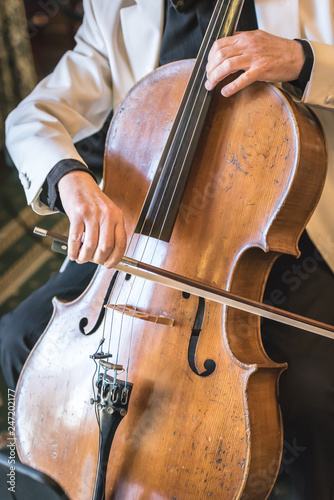 A cello player during a wedding ceremony - 247202177