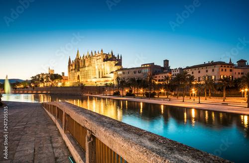 Night view of the Cathedral de Santa Maria in Palma de Mallorca Spain.