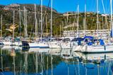 Many yachts in the Marina on a Sunny day. - 247239905