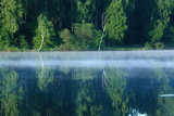 Fog near the river and trees reflected in the water. - 247249321