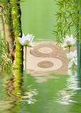bambous à noeud, lotus et symbole yin yang I