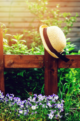 gardener hat on wooden fence in summer garden