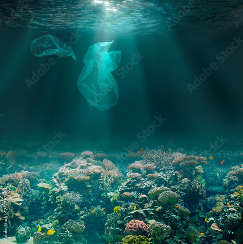 Foto Murales Sea bed underwater with plastic bags. Environment pollution ecological problem.