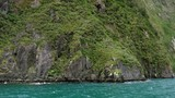 Tracking shot of sailing past high cliff overgrown with lush greenery - 247339144