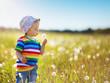 Baby boy standing in grass on the fieald with dandelions - 247340550