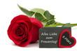 Frauentag 8.März / rote Rose mit Schiefertafel