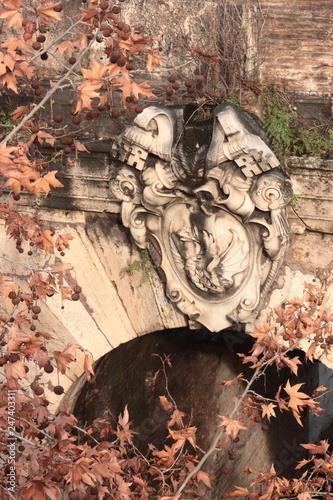 fototapeta na ścianę Roma Trastevere