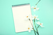 White narcissus flowers with notepad on mint background