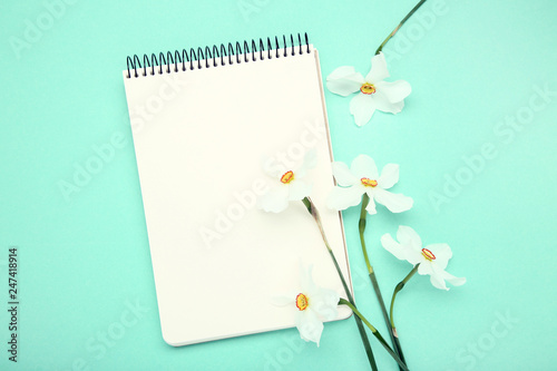 White narcissus flowers with notepad on mint background - 247418914