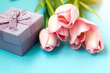 Pink tulips on the blue background with gift box. Flat lay, top view. Valentines background