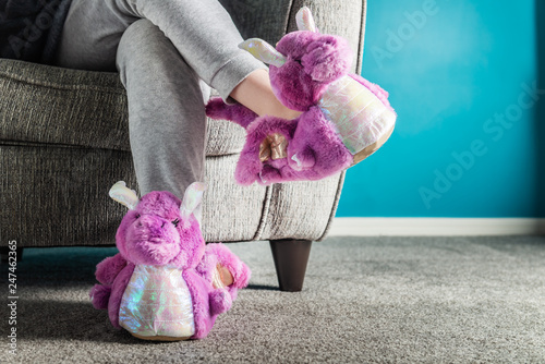 Young girl is wearing cute soft 3d dragon slippers