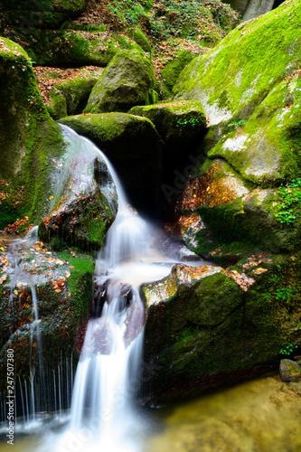 canyon Wolfsschlucht, Upper Austria - 247507380