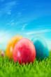 Leinwandbild Motiv Ostereier zu Ostern in Natur vor Himmel