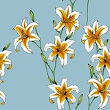 Seamless vector pattern of white lilies. Floral design for textile and Wallpaper.