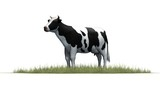 Cow in green grass - separated on white background