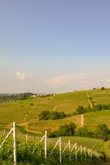 Scenic view of vineyard hills in springtime, Barbaresco, Langhe, Piedmont, Italy © Simona Sirio