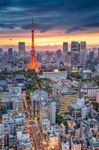 fototapeta na ścianę Tokyo. Aerial cityscape image of Tokyo, Japan during sunset.