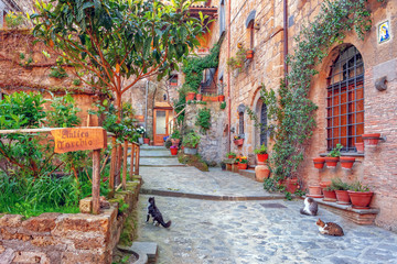 Beautiful alley in old town, Italy, Europe