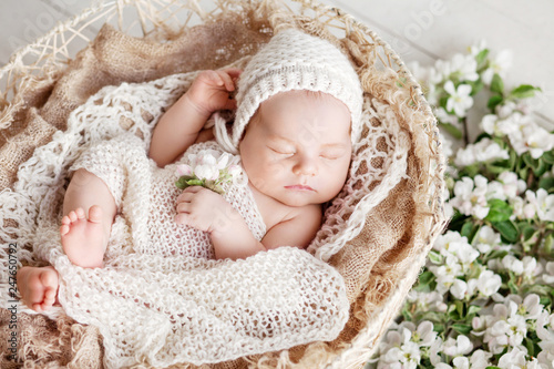 Sweet newborn baby sleeps in a basket. Beautiful newborn boy with flowers