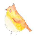 Watercolor yellow bird