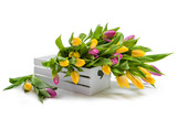 Spring flowers. Multicolored tulips in a white box. Spring bouquet. Yellow and purple tulips. Congratulation. Valentine's Day, Spring, Easter