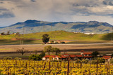 Rolling hills and clouds landscape near livermore California with vineyards