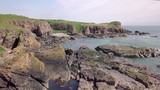 Aerial view of the rugged coastline at Kinneff on a sunny day, Aberdeenshire, Scotland - 247687531